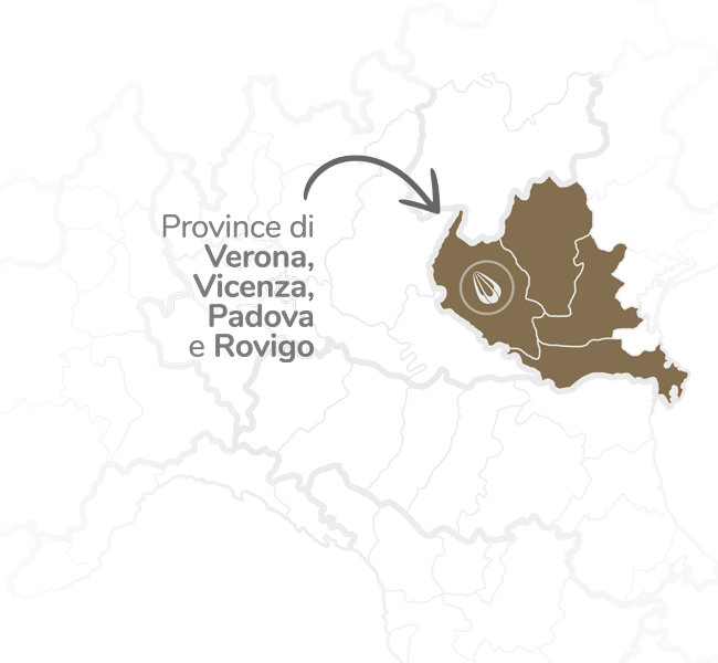 provolone-mappa-zona-2