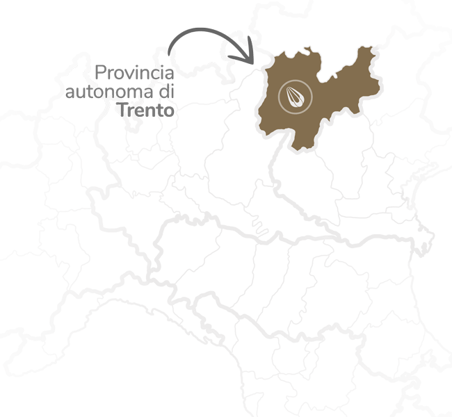 provolone-mappa-zona-4
