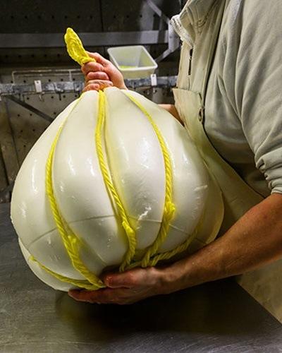 Fábricas Productoras de queso Provolone Valpadana forma mandarone