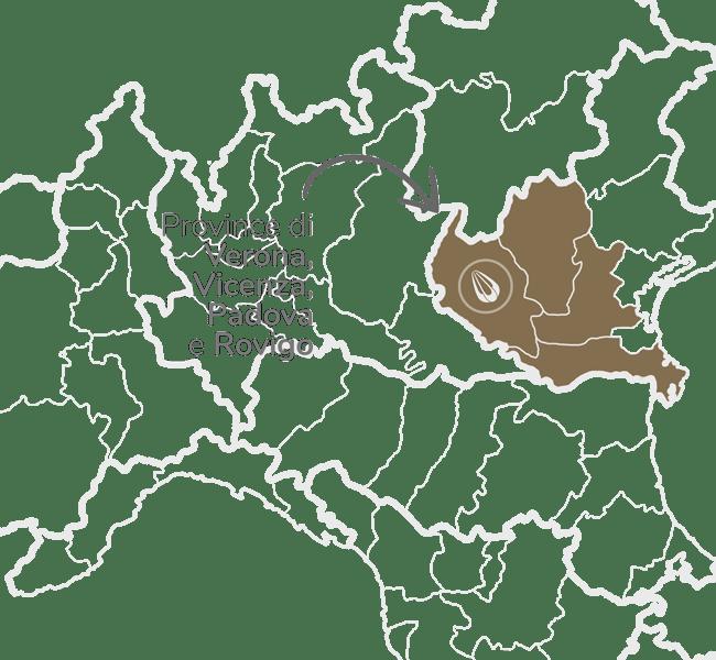 zona Provincia de Verona Vicenza Padua Rovigo