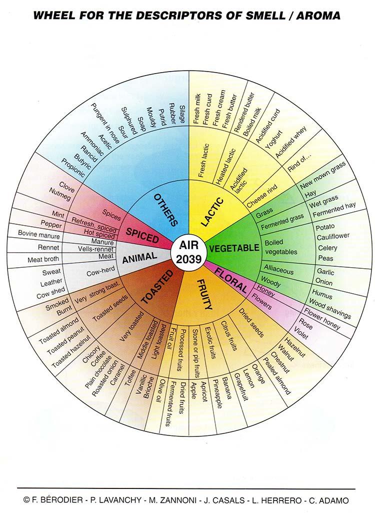 Consejos de degustación Provolone Valpadana rueda de aromas