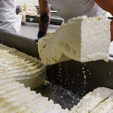 Processing of Provolone first cut