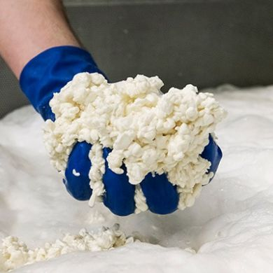 Processing of Provolone pasta detail