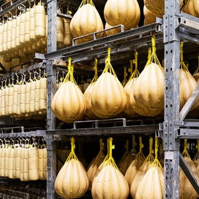 Processing of seasoning Provolone