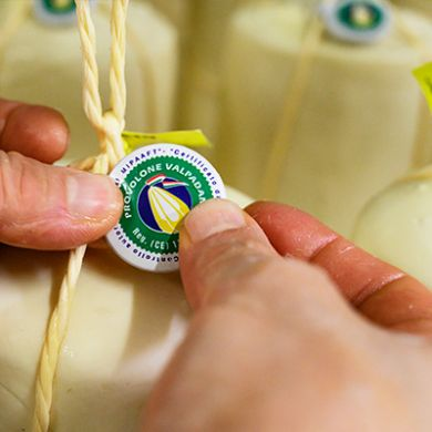 Processing of the Provolone cockade affixing